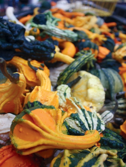 Pierce's Pumpkin Patch produce
