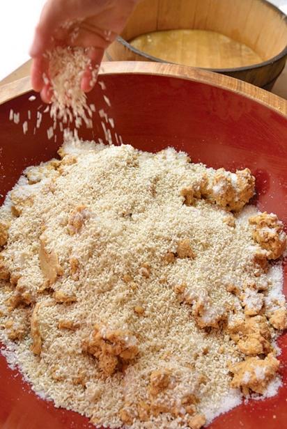 Measuring in rice koji for miso